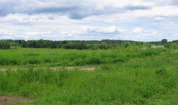 Как сменить вид разрешённого использования земельного участка