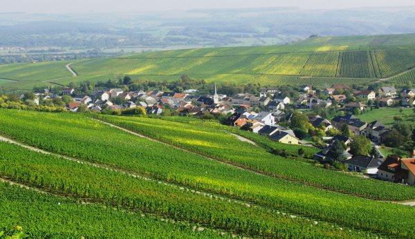 Что можно строить на землях для садоводства?