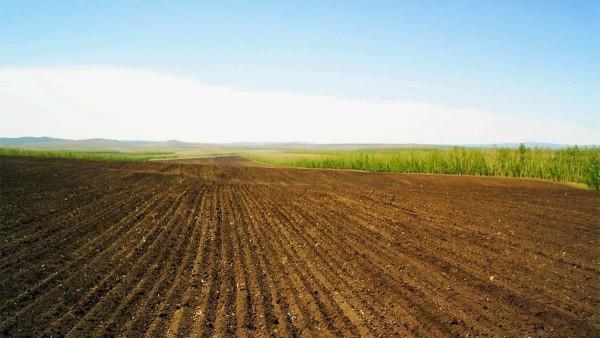 Особенности сельскохозяйственных земель